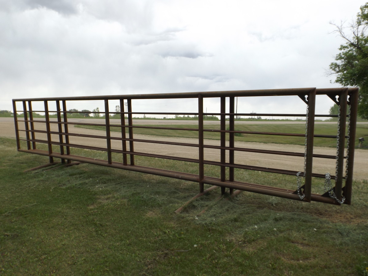 Free Standing Corral Panel Fehrway Feeds Amp Livestock